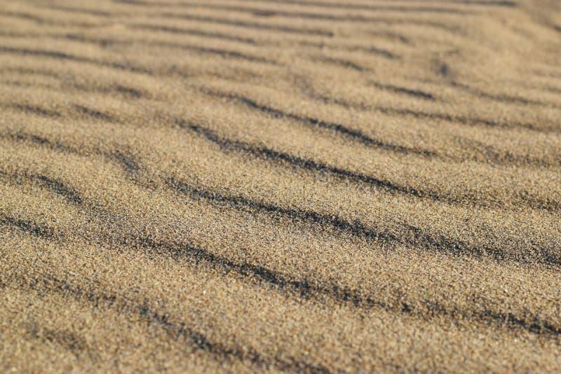 Sand beach texture lines after storm. Sand coast texture lines after storm stock photography