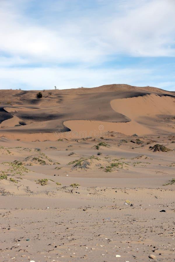 Free Sand Art Along The Sea Of Cortez, El Golfo De Santa Clara, Sonora, Mexico Royalty Free Stock Image - 107269686