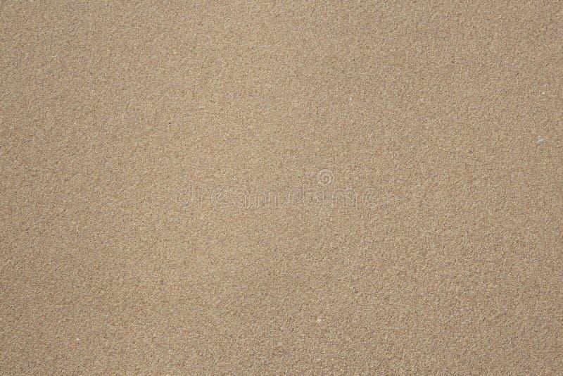 Sand as background. Sandy beach royalty free stock photo