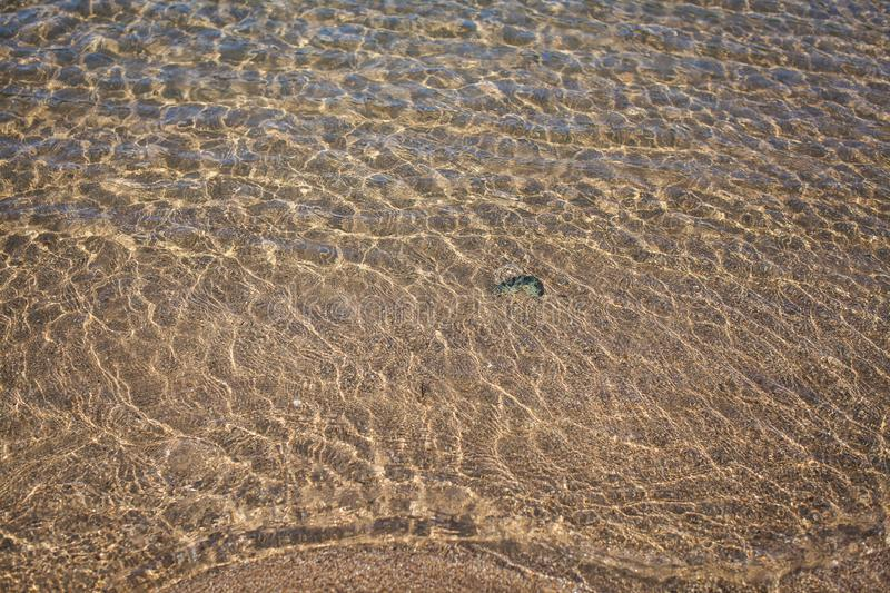 Sand background texture under water. Transparent water ripple, sand waves and sunlight glare. Sea bottom background royalty free stock photography