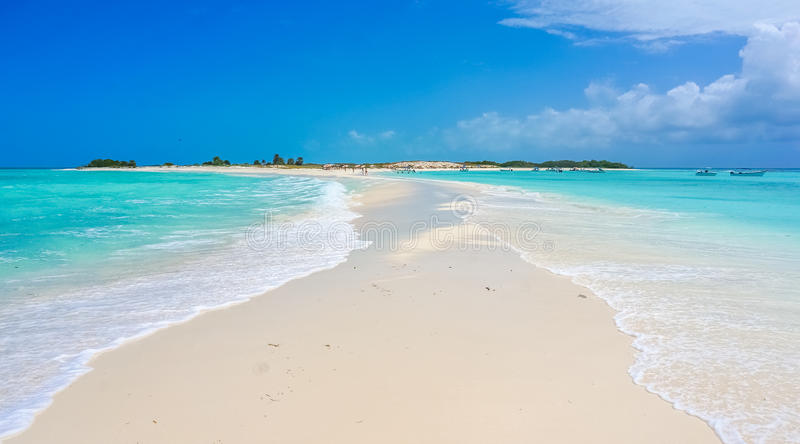 Sand bank in a Caribbean beach. Amazing sand bank in a Caribbean beach stock photos