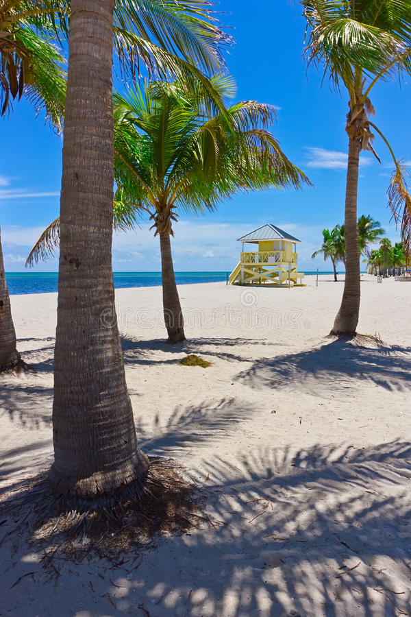 Sand beach with palm trees and lifegard tower. Tropical white sand beach with palm trees and lifegard tower royalty free stock photo