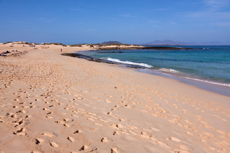 Download Sand beach in the summer stock image. Image of summer - 12082569