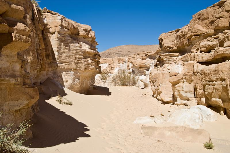 Sand canyon in lifeless desert stock photography