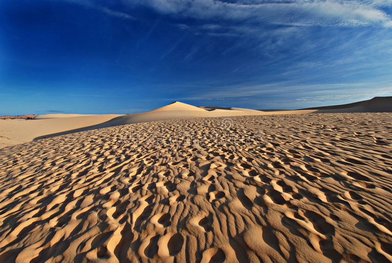 Sand desert. Desert, sand dunes, footprints, path, natural background, landscape with blue sky, perspective, barkhan and sand-dune stock photos