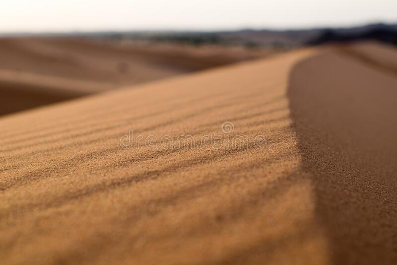 Sand In Desert Free Public Domain Cc0 Image