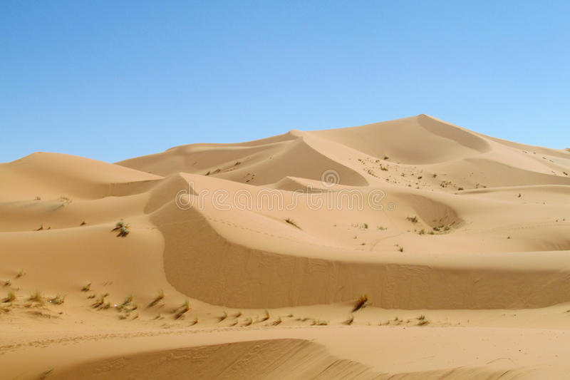 Sand desert dune in Sahara. Beautiful sand desert dune panorama in Sahara. High sand dunes in the biggest world Sahara desert, Africa. Sahara erg. Erg Chebbi in stock images