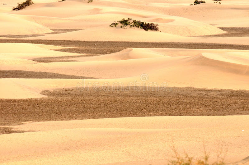 Download Sand Desert stock image. Image of landscape, gold, sahara - 33635255