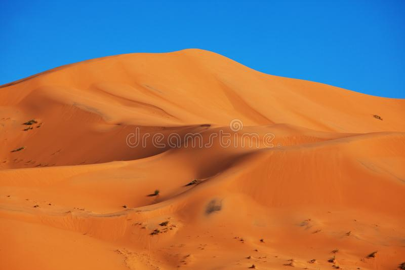 Sand desert royalty free stock photos