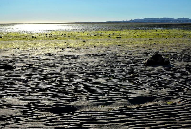 Sand in Dublin Bay in Sandymount Irishtown Nature Park. Photo stock photo