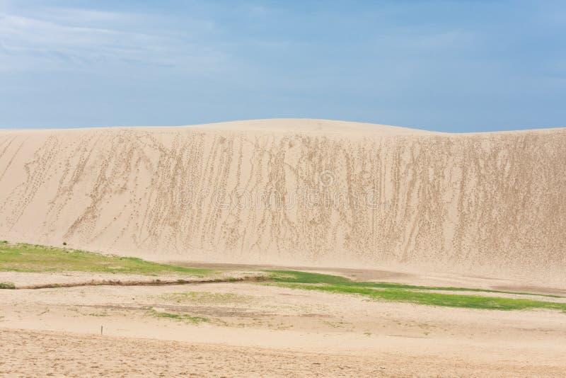 Download Sand dune stock image. Image of travel, climbing, dune - 11703547