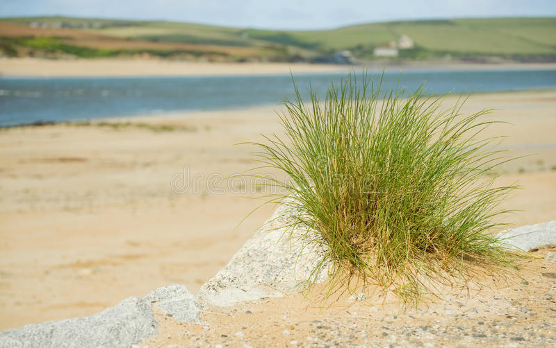 Download Sand dune stock photo. Image of estuary, river, rocks - 21367086