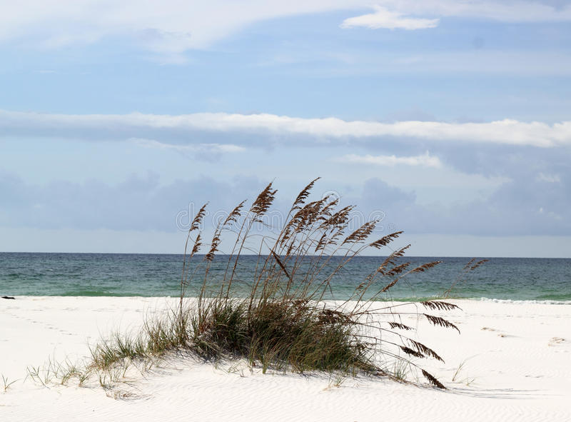 Download Sand Dune stock photo. Image of sunny, vacation, tourism - 26695178