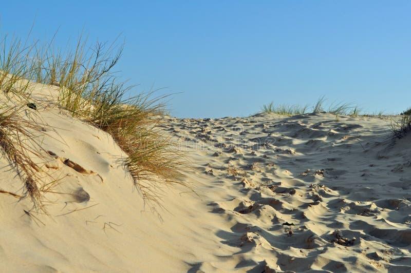 Download Sand dune stock photo. Image of ocean, england, dune - 38755132
