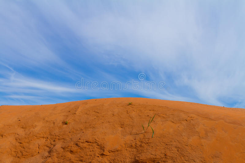 Sand dune and the blue sky. Old sand quarry with a little sprouts of grass and an insects tracks under the spring sky stock photos