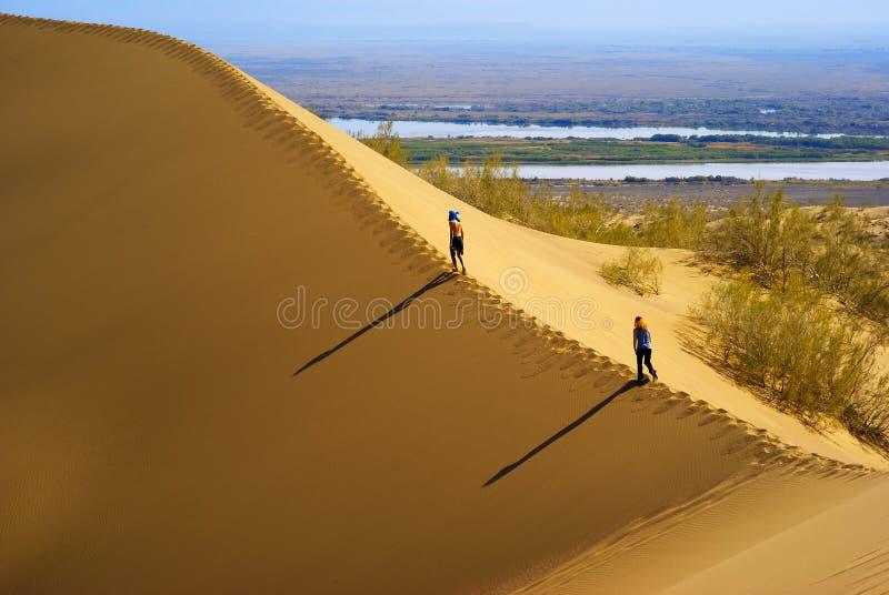 Sand dune in desert stock photos
