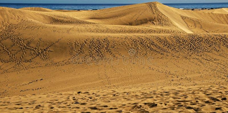 Sand Dune Desert. African European Sand Dune Desert Landscape in Gran Canaria Island Spain stock photo