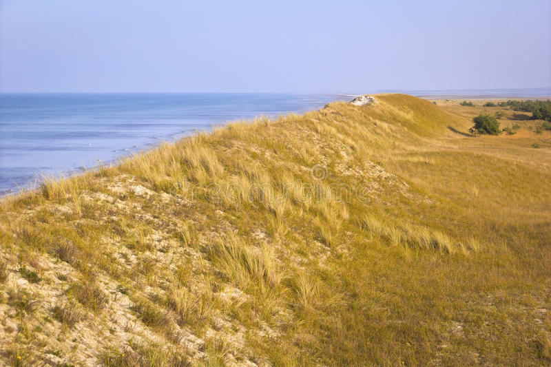 Sand Dune with European Beachgrass. On the beach of Darss. The east coast of the peninsula Fischland-Darss-Zingst is one of only a few areas in Germany that was stock photography