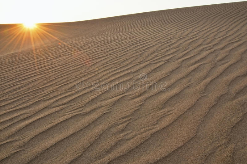 Download Sand dune with flare stock image. Image of places, life - 9995113