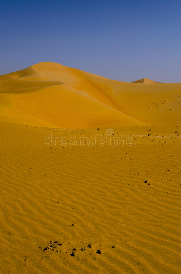 Sand dune hills in the hot desert of Liwa Oasis United Arab Emirates. Winds form the curved sand dunes of Liwa region near Abu Dhabi UAE royalty free stock images