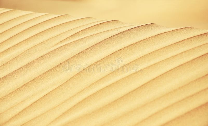 Sand Dune Lines Close Up stock photography