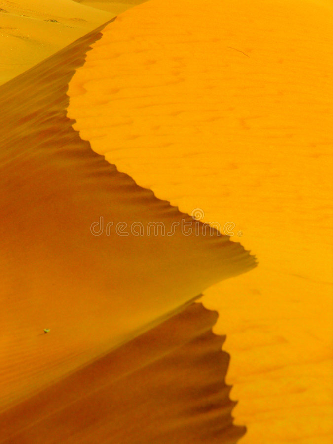Sand Dune near Big Red in Dubai stock images