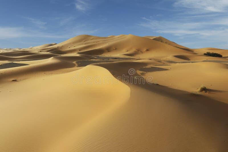Sand dune in the sahara desert. Near merzouga -morocco stock photos