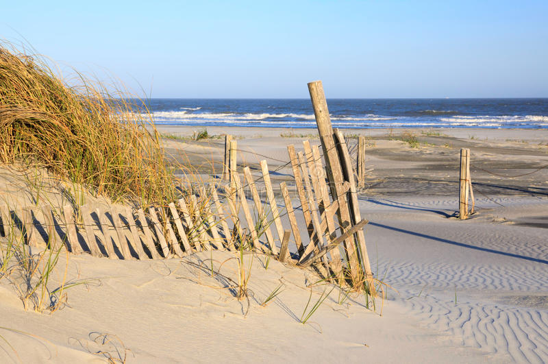 Sand Dune and Sea Oats Ocean Folly Beach South Carolina. Sand dune, sea oats, erosion fencing and Atlantic Ocean on Folly Beach near Charleston, South Carolina stock photos