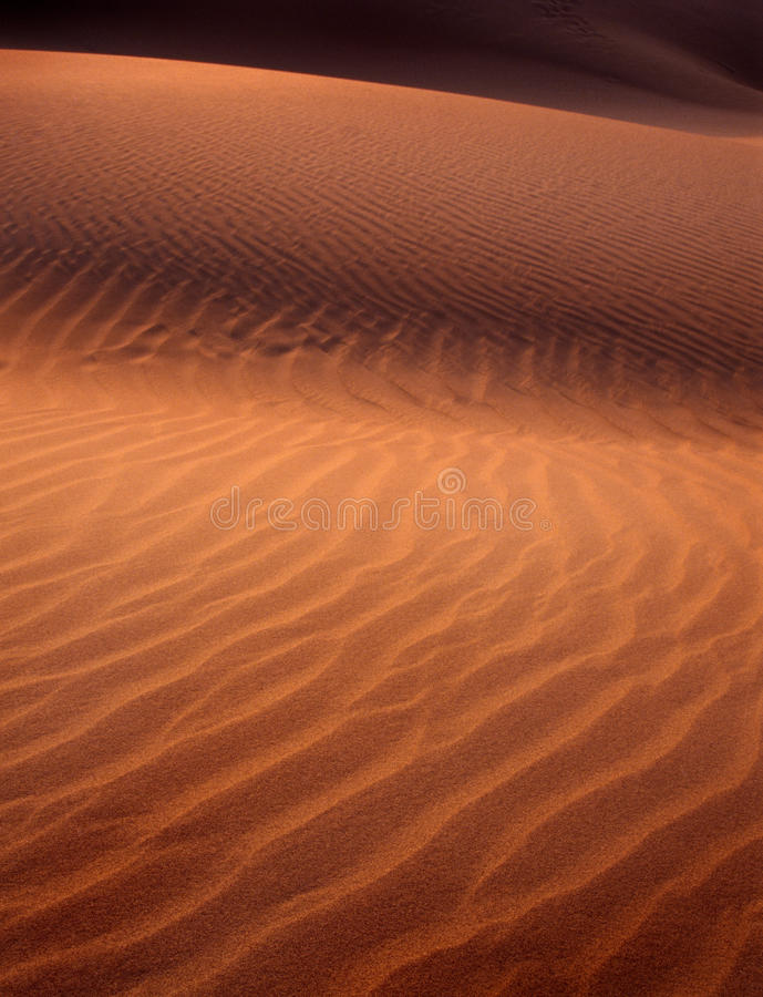 Sand Dune Shadows. Sand dune detail at sunset with light and shadow royalty free stock photos