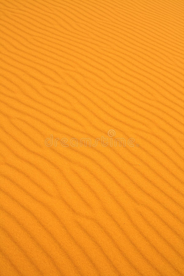 Download Sand dune texture stock photo. Image of nobody, close - 10776628
