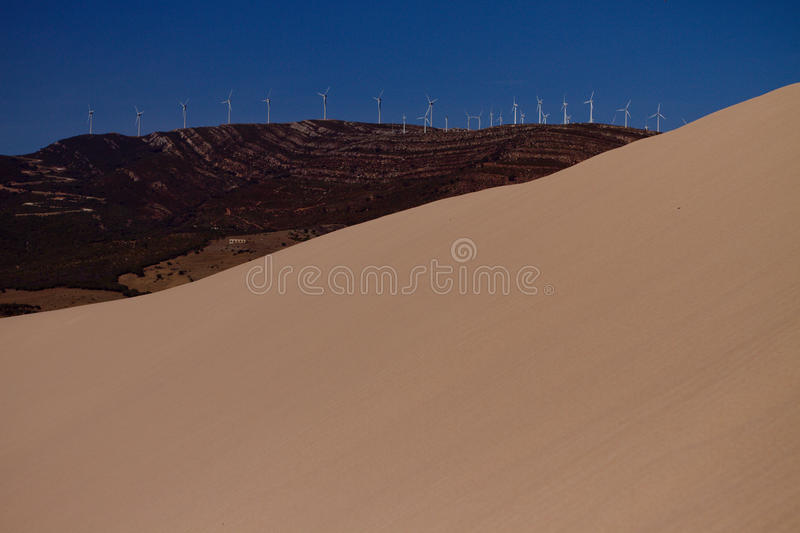 Sand dune and trees royalty free stock photo