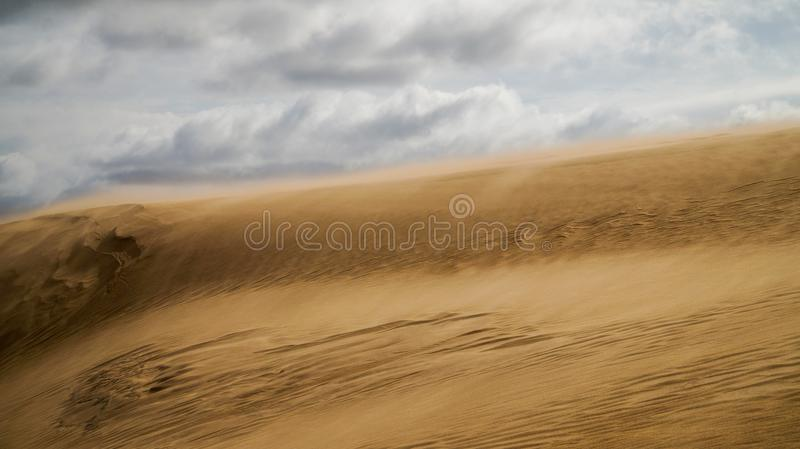 Sand dune in Uruguay royalty free stock photo