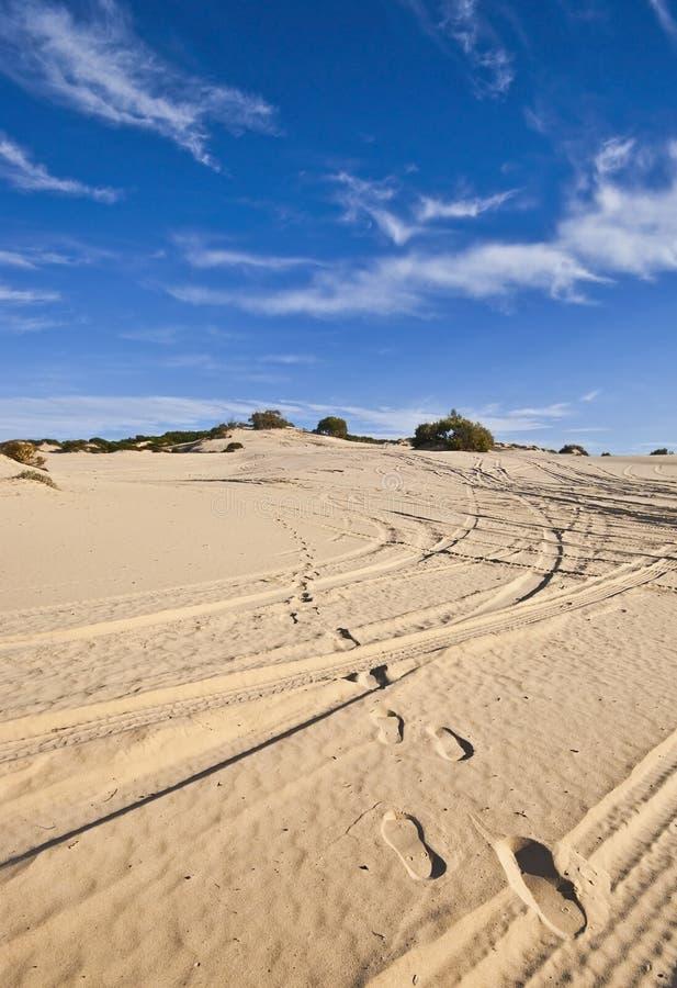 Sand Dunes Royalty Free Stock Photos