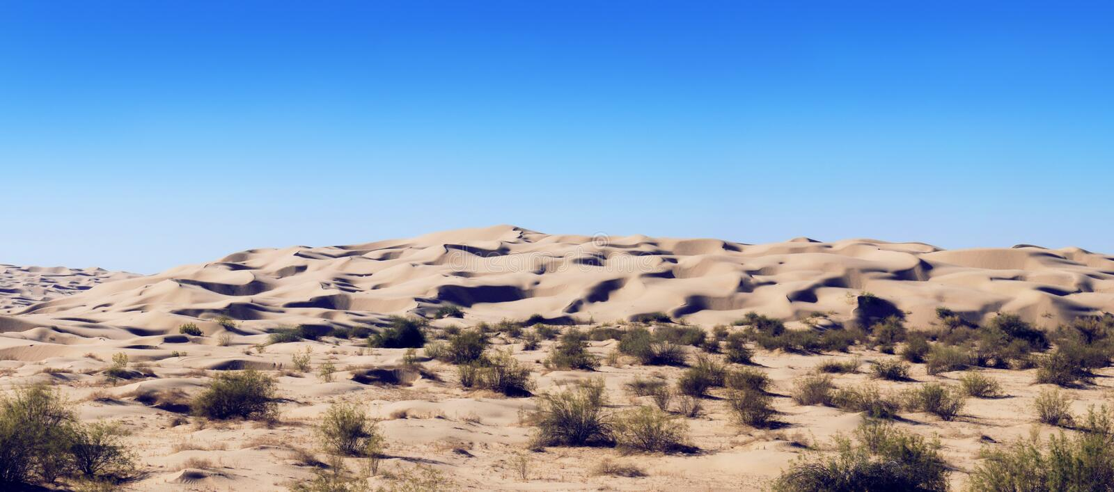 Download Sand Dunes stock photo. Image of beauty, destinations - 2142148