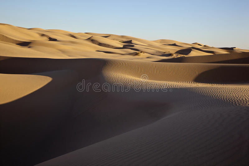 Download Sand Dunes stock image. Image of alone, desolate, shifting - 25567679