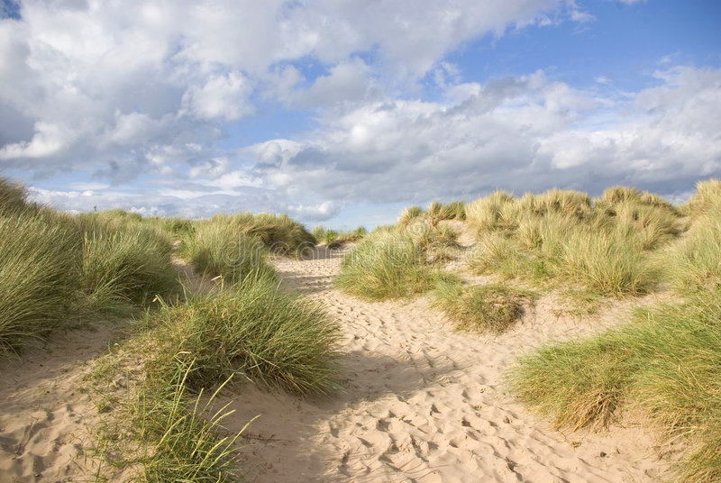Download Sand Dunes Stock Images - Image: 6510564