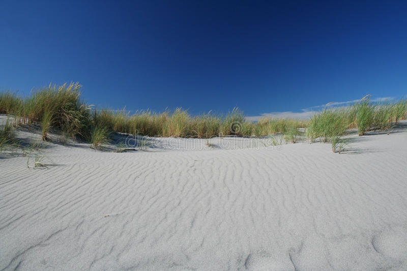 Sand dunes on a beach stock images