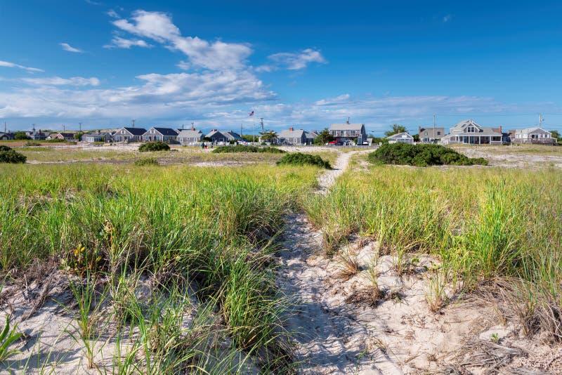 Sand dunes on the beach, Cape Cod, Massachusetts, USA. Landscape with sand dunes on the beach at Cape Cod, Massachusetts, USA stock image