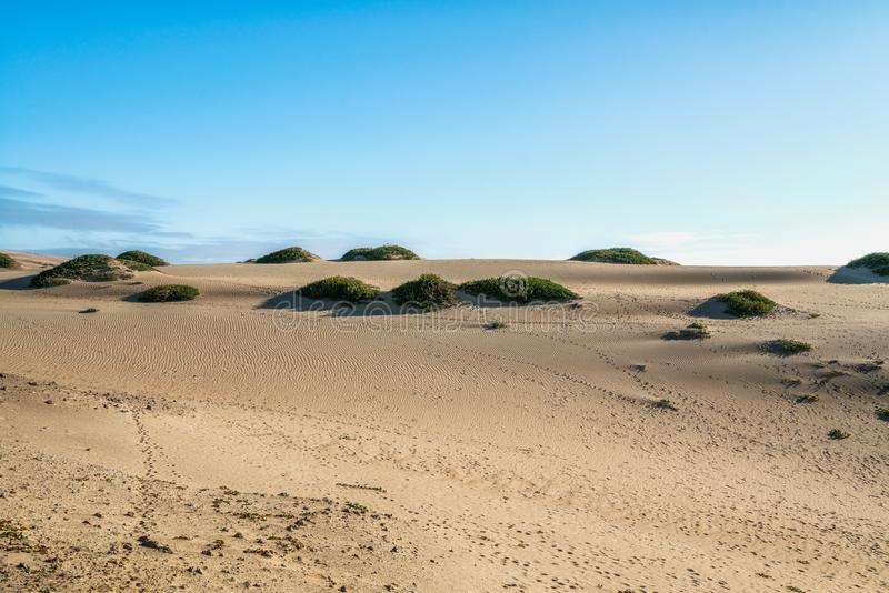 Sand Dunes and Clear Blue Sky royalty free stock photo