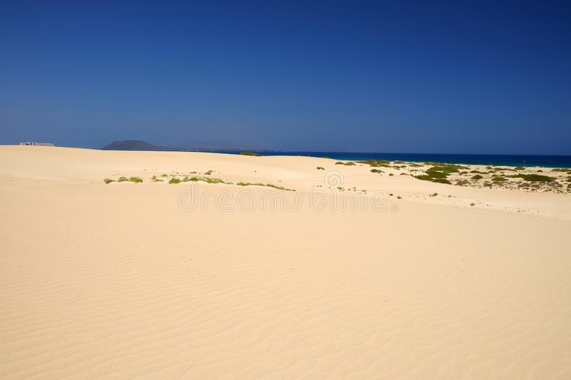 Sand Dunes and beach in National Park Corralejo, Fuerteventura royalty free stock photo