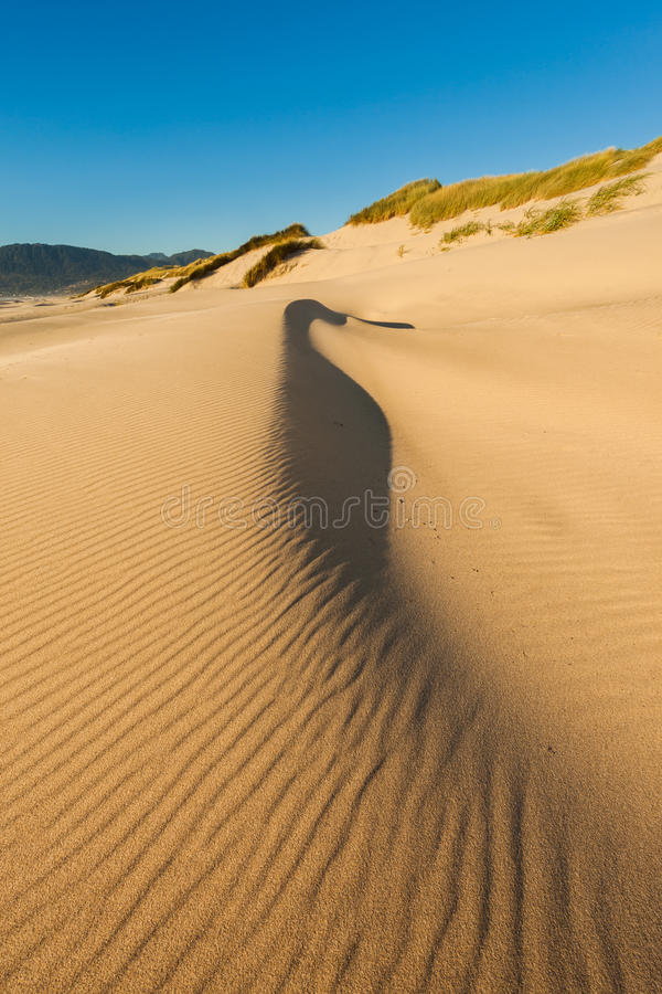 Sand dunes on the beach at Nehalem Bay State Park, Oregon stock photos