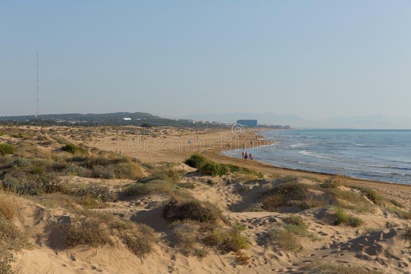 Sand dunes and beach between Torre La mata and Guardamar de Segura Costa Blanca Spain. Costa Blanca beautiful natural beach between Torre La mata and Guardamar stock images