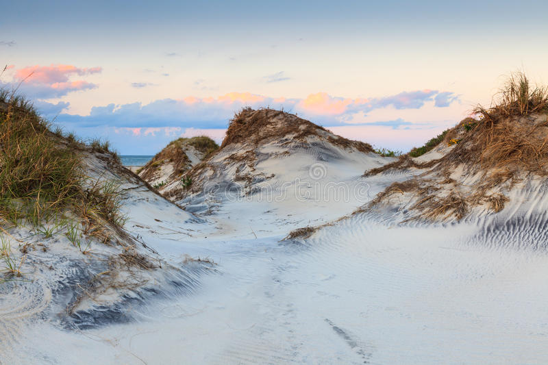 Sand Dunes Cape Hatteras National Seashore North Carolina. Background of sand dunes on the beach of the Cape Hatteras National Seashore on Pea Island in North stock photo