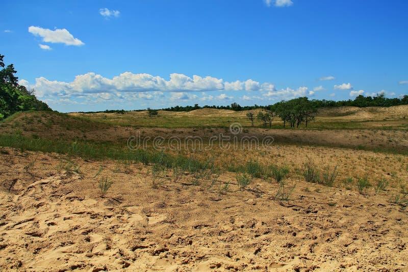 Sand dunes in Danube Delta stock images