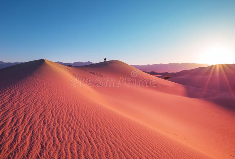 Sand dunes in California. Sand dunes in Death Valley National Park, California, USA. Living coral toned stock image