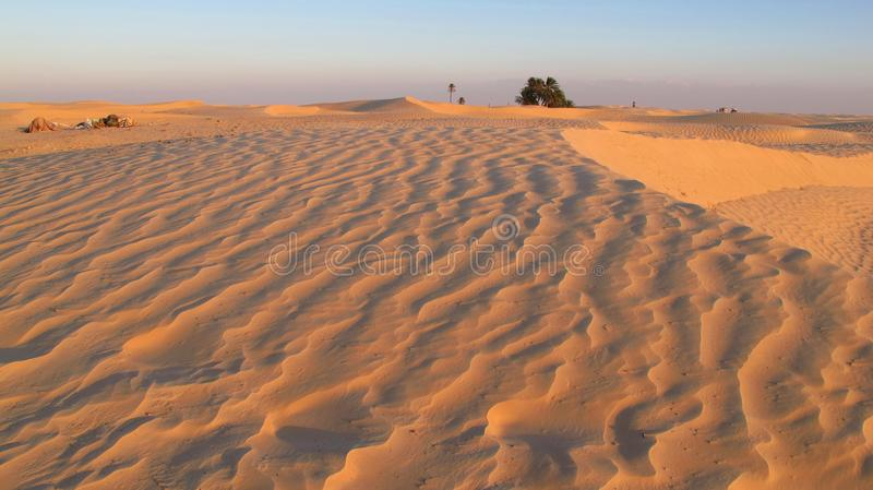 Sand dunes in the desert. Of Tunesia royalty free stock image