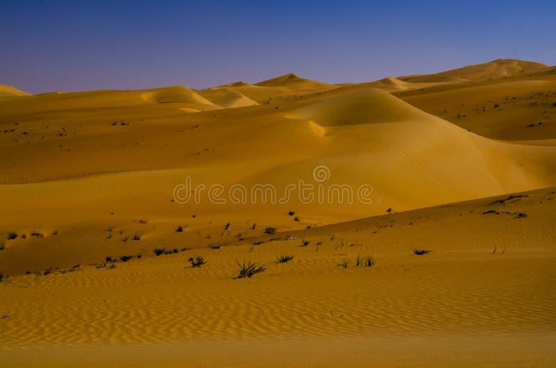 Sand dunes in the desert of Liwa Oasis United Arab Emirates. Hills of sand form desolate dunes of hot desert region of Liwa Oasis near Abu Dhabi UAE royalty free stock image