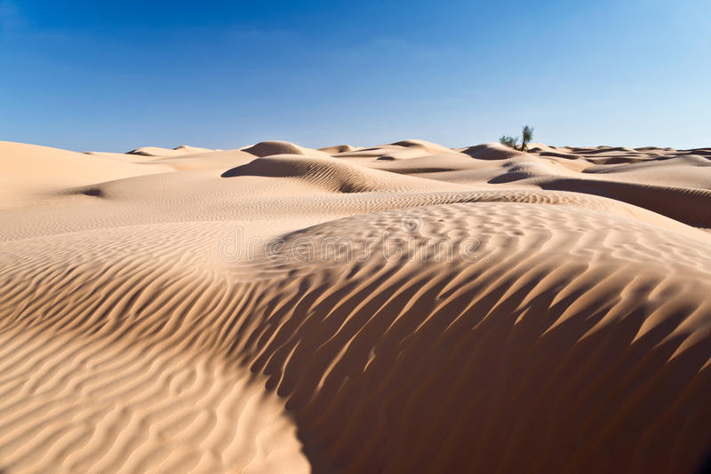 Sand dunes desert of Sahara. South Tunisia royalty free stock photo