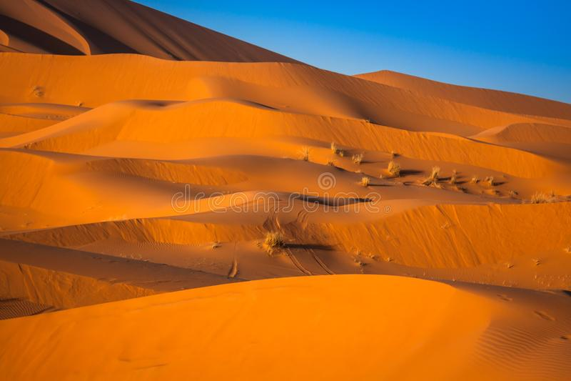 Sand Dunes of Erg Chebbi int he Sahara Desert, Morocco.  royalty free stock photos