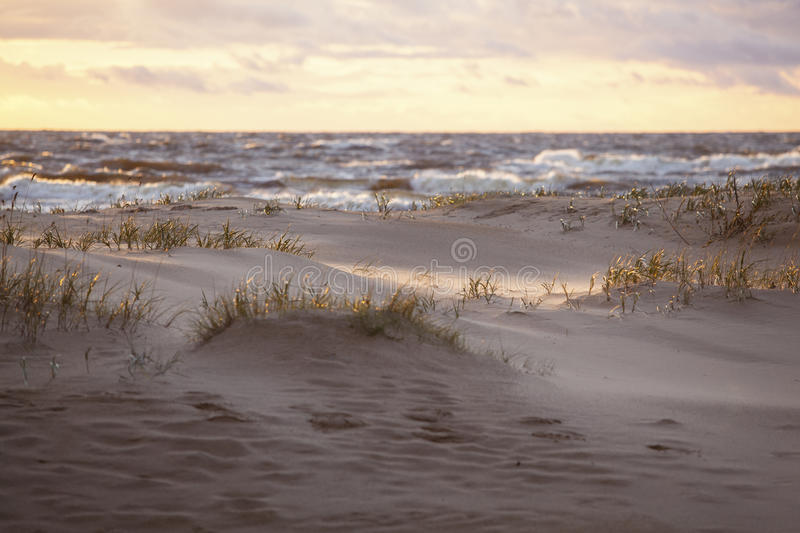 Sand dunes in evening sunlight. Yellowed clouds stock image